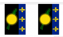 GUADELOUPE BUNTING - 3 METRES 10 FLAGS